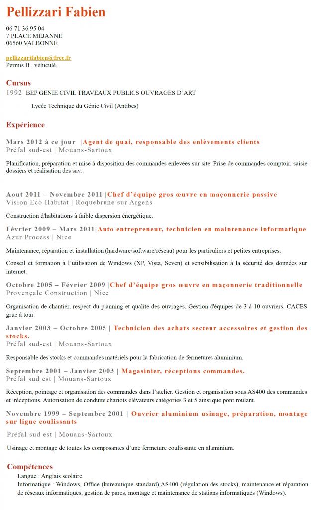 CV Pellizzari Fabien